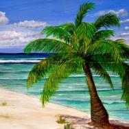Cayman Brac West End Of Island 18x24 Oil On Canvas Oil On Canvas