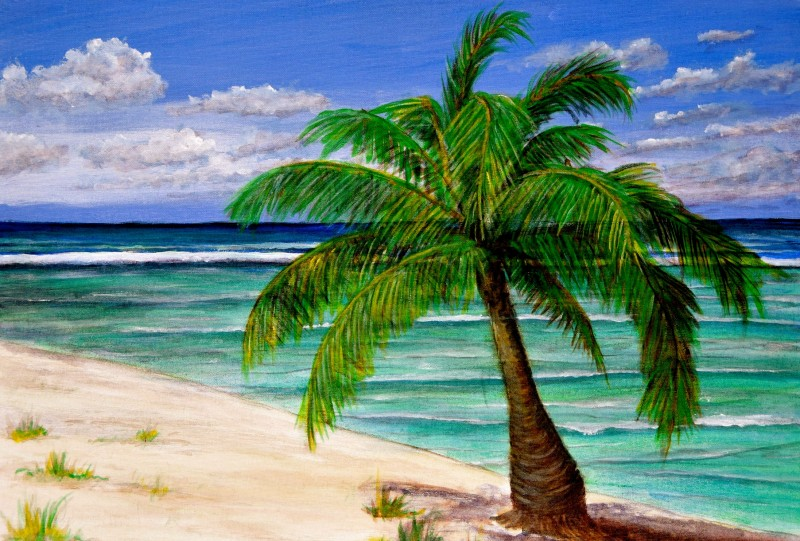 Cayman Brac West End Of Island 18x24 Oil On Canvas Oil On Canvas