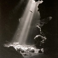 Grotto with One Fish 12x15 Giclee on Canvas
